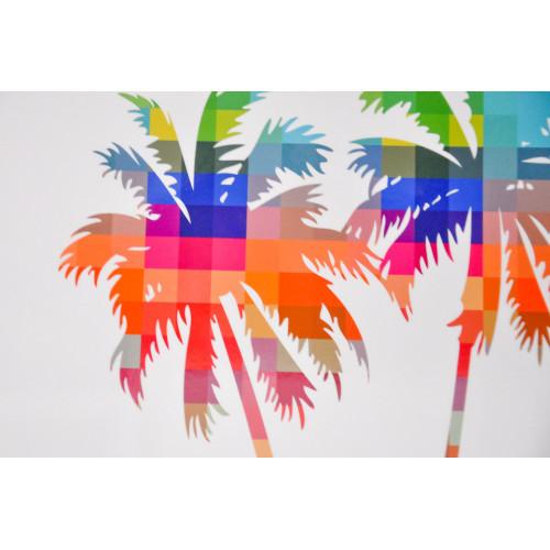 Palmier multicolor