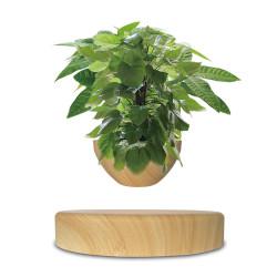 Mini-jardin en lévitation Babylonia aspect bois clair