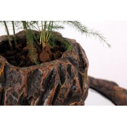 RockGarden-pot